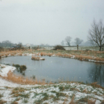 Pond at Rosie's Wood in the snow